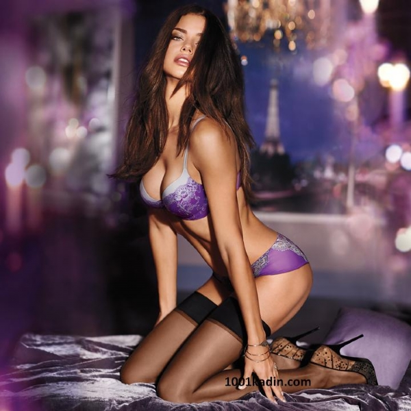 Very sexy lingerie models